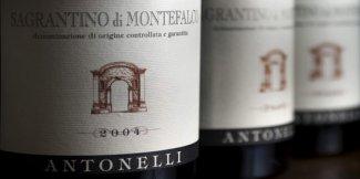 Degustazione Antonelli Montefalco ( Umbria )
