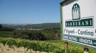 Degustazione Barberani (Umbria)
