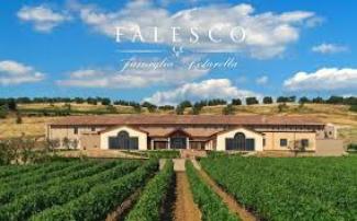 Degustazione Falesco (Lazio)