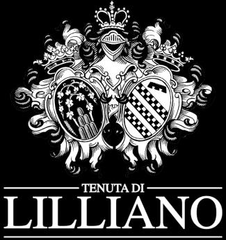 Degustazione Tenuta di Lilliano Chianti Classico ( Toscana )