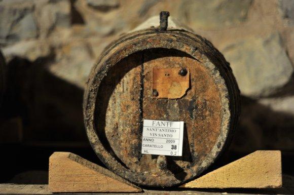 Wine Tasting Fanti Montalcino ( Tuscany )