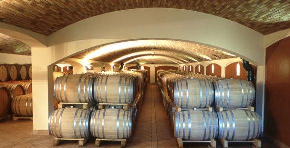 Wine Tasting Jermann ( Friuli Venezia Giulia )