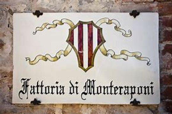 Degustazione Monteraponi Chianti Classico ( Toscana )