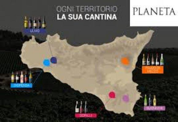 Degustazione Planeta ( Sicilia )