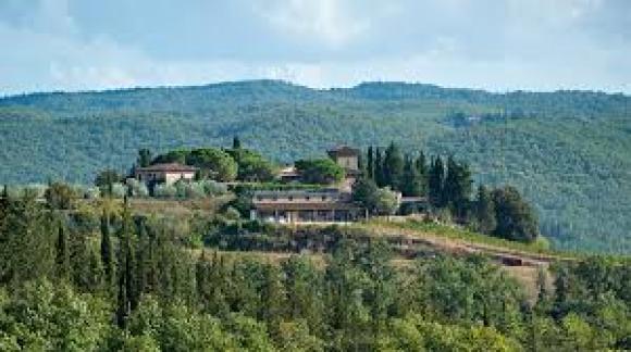 Degustazione Castello dei Rampolla Chianti classico (Toscana)