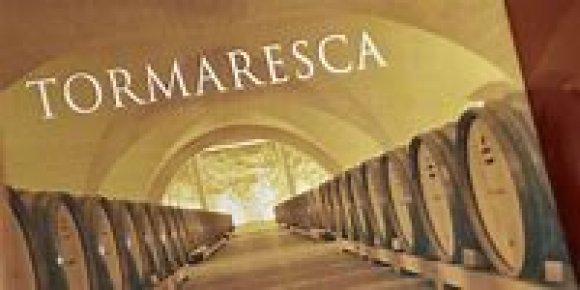 Wine Tasting Tormaresca( Apulia )