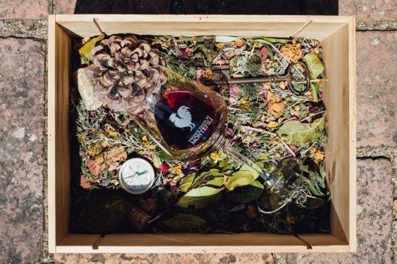 Degustazione Vecchie Terre di Montefili Chianti ( Toscana )